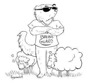 Brebis guard